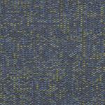 DOTS-6079